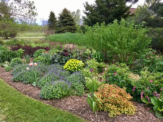 Display Gardens for Inspiration