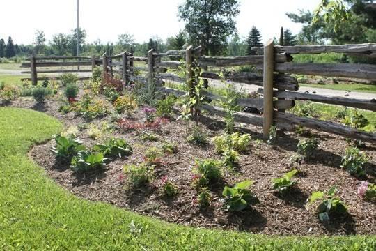 Mulched Gardens