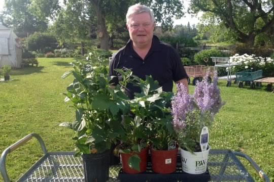 Alan Ropar with fall flowering perennials