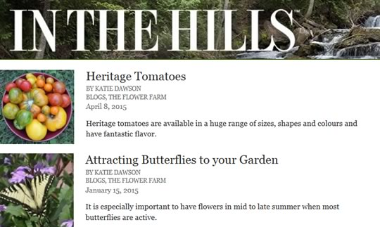 Follow our blog posts on 'In the Hills'